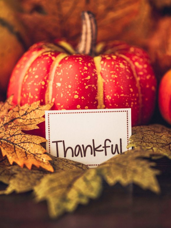 November 2018 — Give Thanks to the Lord